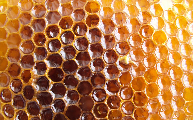 Honeycomb Customer Loyalty Is Sticky